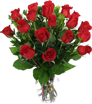 18-red-roses-in-a-vase